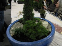 Garden Show 2011 001
