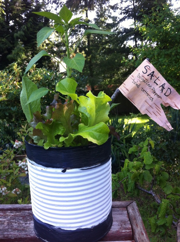 Recycled garden - Recycled containers for gardening ...