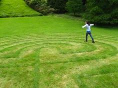 Lawn Maze