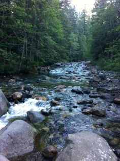 Snoqualmie River South Fork