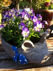 Pansies for a Pig!