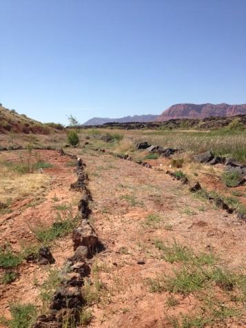 Southern Utah Desert